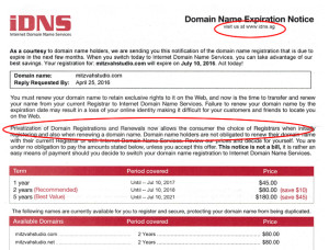 Domain Renewal Scam or Just Doing Business?
